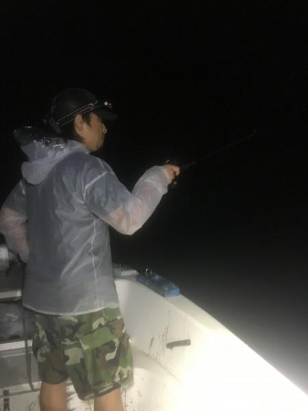 石川県 能登 アオリイカ 2016