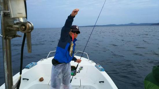 ティップラン 五目釣り アオリイカ 石川県 能登