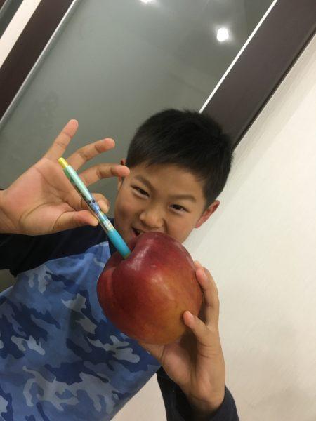 長野 リンゴ アップルペン